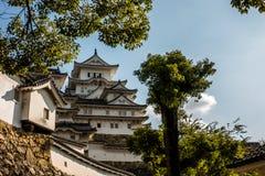 Parete di pietra esterna e castello bianco con priorità alta il fogliame di Fotografia Stock Libera da Diritti