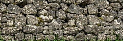 Parete di pietra naturale con vegetazione verde, i piccoli fiori ed il muschio Immagini Stock Libere da Diritti