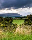 Parete di pietra sull'azienda agricola con la collina di Pendle nella distanza sul pomeriggio nuvoloso di estate Fotografia Stock