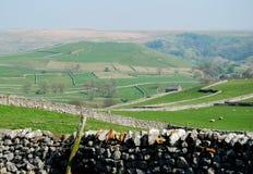 Parete di pietra in vallate del Yorkshire (Regno Unito) Immagini Stock Libere da Diritti