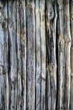 Parete di una parete della casa di ceppo Fotografie Stock Libere da Diritti