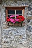 Parete di vecchia casa dell'azienda agricola fatta delle pietre di campo con la finestra ed i fiori rossi Fotografie Stock Libere da Diritti