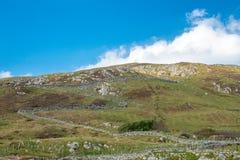 Parete di zigzag su una collina attraverso i campi in Irlanda rurale immagini stock libere da diritti