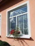 Parete e finestre domestiche rosa fotografia stock libera da diritti