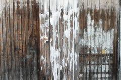 Parete e porta di legname sopravvissute. Immagine Stock