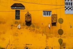 Parete gialla con le piccole finestre e gabbie per uccelli Fotografie Stock Libere da Diritti