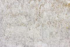 Parete grigio chiaro d'annata incrinata sporca di struttura della muffa del calcestruzzo e del cemento di vecchio lerciume o fond fotografia stock