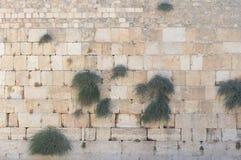Parete lamentantesi di Gerusalemme Fotografia Stock Libera da Diritti