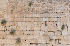 Parete occidentale, Gerusalemme Fotografie Stock Libere da Diritti