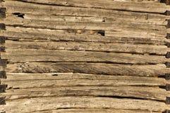 Parete pionieristica del granaio della cabina di ceppo del fondo in sole Immagine Stock
