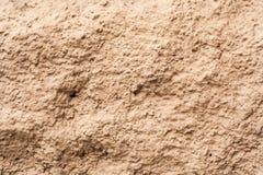 Parete rocciosa beige Fondo, struttura Fotografia Stock