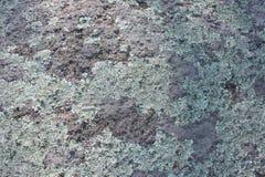 Parete rocciosa con i licheni fotografia stock libera da diritti