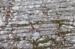 Parete rocciosa striata nelle montagne di Catskill fotografia stock