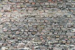 Parete sotterranea di Berlino vecchia con i mattoni ed i colori Fotografie Stock Libere da Diritti