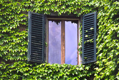 Parete sviluppata avorio con le finestre Fotografia Stock