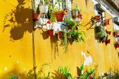 Parete tradizionale di Lisbona Fotografie Stock