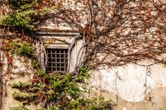 Parete verde di vecchio palazzo di bellezza Pieskowa Skala - in Polonia, vicino a Cracovia. Immagine Stock