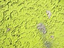 Parete verde, fondo, arte fotografia stock libera da diritti