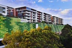 Parete verde moderna delle costruzioni Fotografia Stock