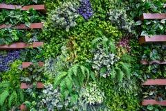 Pareti decorate con gli alberi artificiali fotografia stock