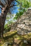 Pareti del castello sull'isola di Inveruglas immagini stock