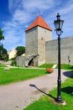 Pareti della città di Tallinn fotografia stock libera da diritti