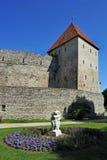 Pareti della città fortificate l'Estonia di Tallinn Fotografie Stock Libere da Diritti