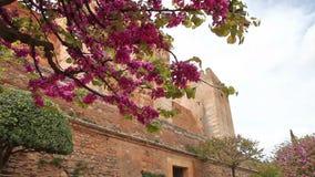 Pareti della fortezza di Alhambra archivi video