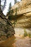 Pareti di canyon Fotografie Stock Libere da Diritti