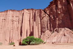 Pareti di canyon rosse di Talampaya immagine stock libera da diritti