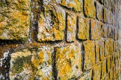 Pareti di pietra del vecchio monastero coperte di muschio Fotografia Stock Libera da Diritti