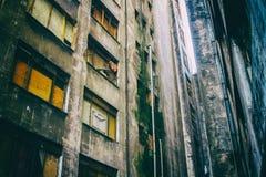 Pareti invecchiate ed ammuffite di una costruzione abbandonata Fotografia Stock