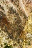 Pareti variopinte del canyon del fiume Yellowstone nel Wyoming Fotografia Stock Libera da Diritti