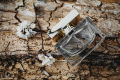 Parfüm mit Frühlingsblumen Lizenzfreies Stockbild