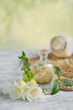 Parfüm und aromatisches Öl stockbild