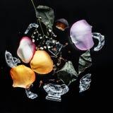 Parfüme eingestellt auf schwarzen Hintergrund mit Blumen stockfotos