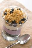 Parfait à yaourt de myrtille Photos stock