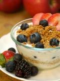 Parfait del yogurt Fotografia Stock