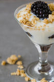 Parfait del yogurt Immagine Stock
