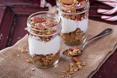 Parfait do granola do pão-de-espécie com iogurte foto de stock royalty free