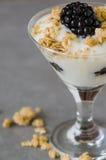 Parfait do iogurte Imagem de Stock