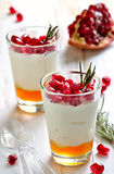 Parfait with honey and pomegranate seeds Stock Images