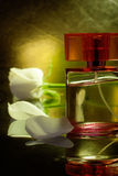 Parfum bottle with white rose Royalty Free Stock Images