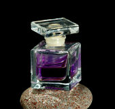 Parfum bottle1 Photographie stock libre de droits