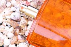 Parfum on cockleshell background Royalty Free Stock Image