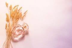 parfum de femme dans une bouteille en verre, un cadeau pour une fille Photographie stock libre de droits