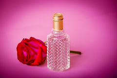 Parfum et bourgeon Image stock
