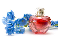 Parfum et fleur sur le fond blanc Photo stock