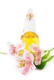 Parfum et parfum Image stock
