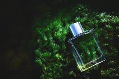 Parfum op nat mos stock foto's